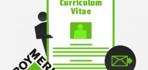 Enviar El Currículum A Leroy Merlin Enviar Curriculum