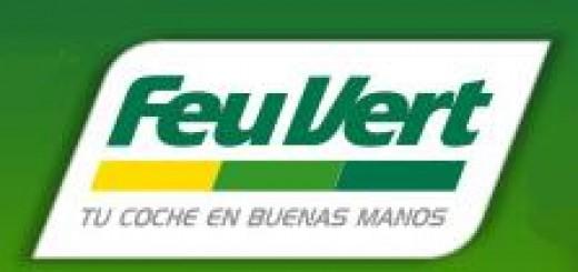Enviar-Curriculum-FeuVert