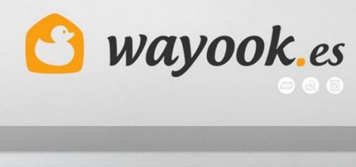 enviar-curriculum-a-wayook